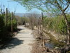 Senir Stream Nature Reserve