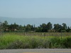 Area around Capernaum