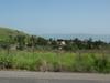 Overlooking Capernaum